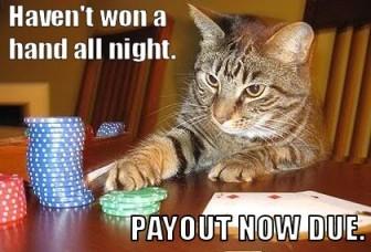 gambler's fallacy example
